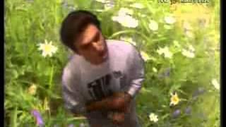 Андрей Державин   Первые цветы клип 1991