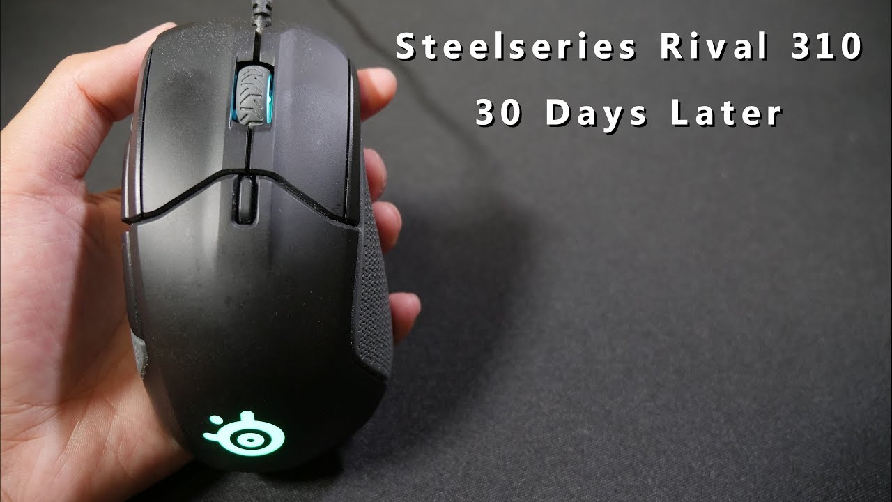 1292d90e928 Update: Steelseries Rival 310 - 30 Days later! - YouTube