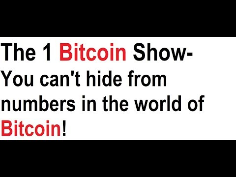The 1 Bitcoin Show- You can't hide from numbers in the world of BTC!