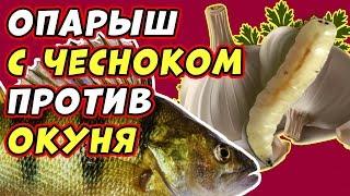 ОПАРЫШ С ЧЕСНОКОМ ТЕСТ НА ОКУНЕ Ловля на МОРМЫШКУ на зимней рыбалке