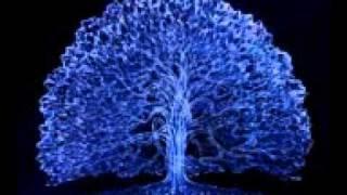 0158 Shamanic - Niall - The Calling - Shaman Dance