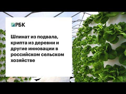 Инновации в сельском хозяйстве. РБК: Инновации