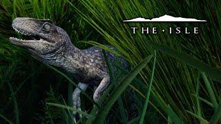The Baby Utahraptor - The Isle