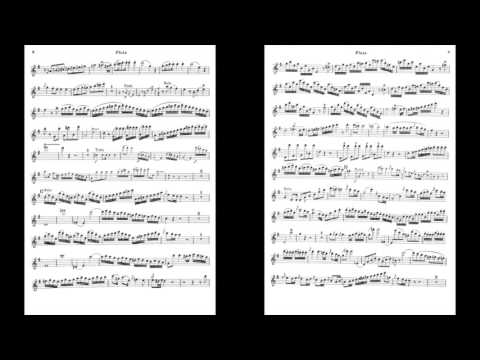 Mozart Flute Concerto in G K.313 I. Allegro maestoso (Piano Accompaniment)