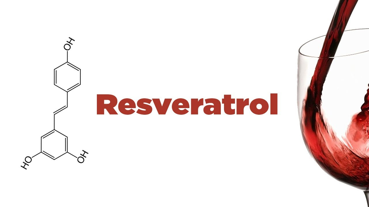 Image result for resveratrol
