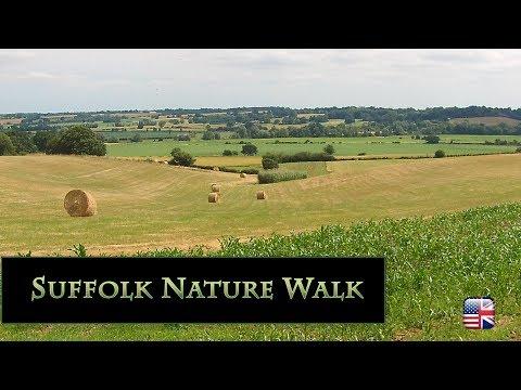 Beautiful Suffolk Nature Walk