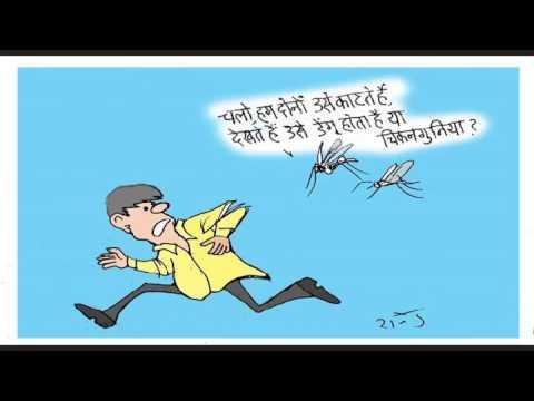 जाने-माने कार्टूनिस्ट राजेन्द्र धोड़पकर की नजर में डेंगू और चिकनगुनिया