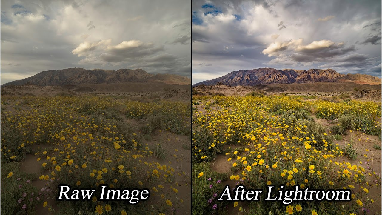 Lightroom intelligent professional landscape photo raw for Professional landscape