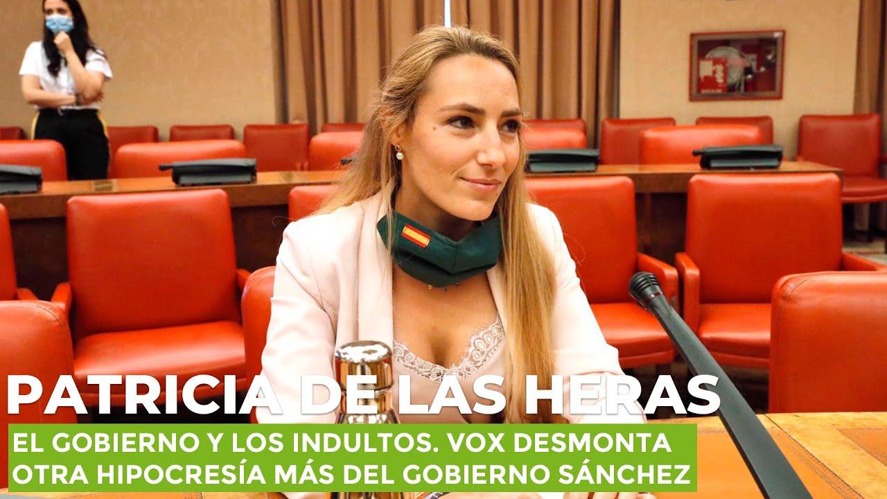 El Gobierno y los indultos. VOX desmonta otra hipocresía más del Gobierno Sánchez