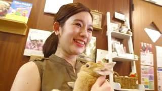 6月26日(日) 午後4時 テレビ東京系にて放送! Google Play presents『最...