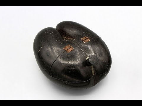 Rare and unusual beggar's bowl from the 1800s made with a Coco De Mer. Video post.