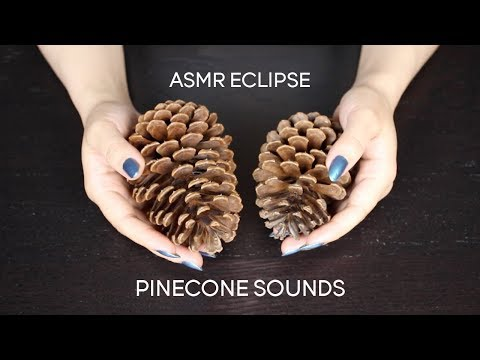 ASMR Pinecones Harsh Sounds (No Talking)