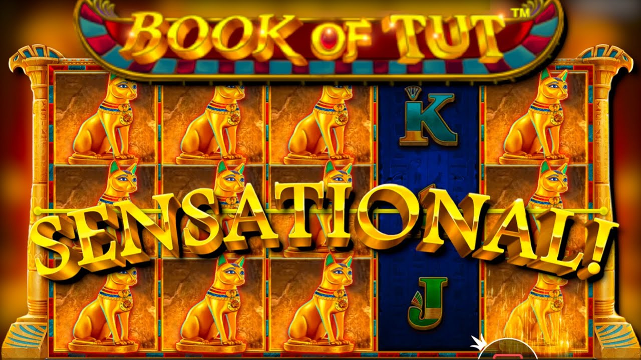 x248 win / John Hunter and the Book of Tut free spins compilation!