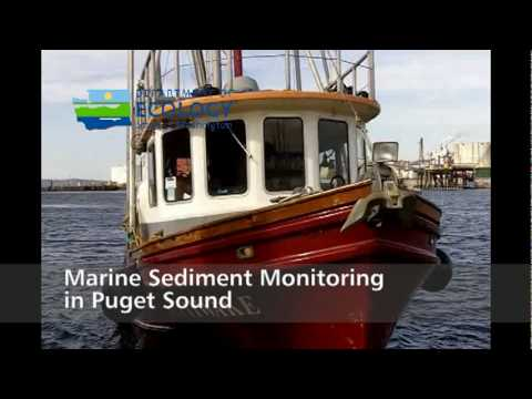 Ecology in Focus: Marine Sediment Monitoring in Puget Sound