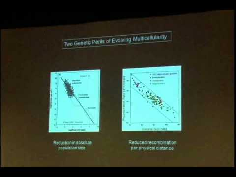 Michael Lynch: Darwin in the 21st Century: Nature, Humanity, and God