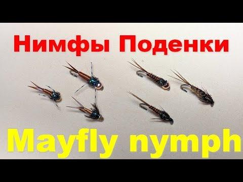 Нимфы Поденки Mayfly Nymph