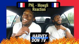 PNL - Mowgli Reaction #HarveyDonTV #Raymanbeats