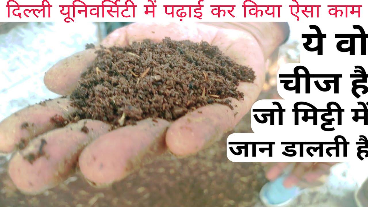 बिहार का सबसे बड़ा vermicompost unit | vermicompost | vermi compost in bihar