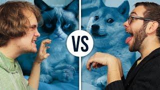 Hund VS Katze