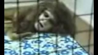Русалки обнаружено тело Шокирующее видео