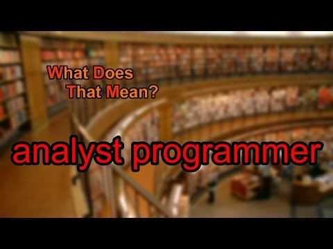 What does analyst programmer mean?