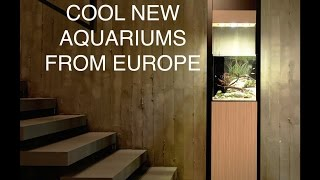 Fincasters Episode 68 Ifalos Aquariums From Elive Pets