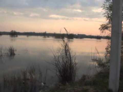 1.  2014г река Ишим как Волга