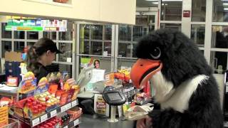 Pennsbury HIgh School Falcon Mascot
