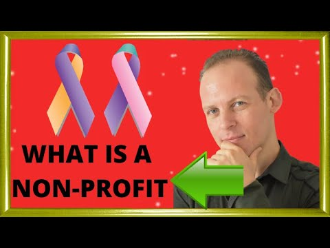 What is a non profit organization