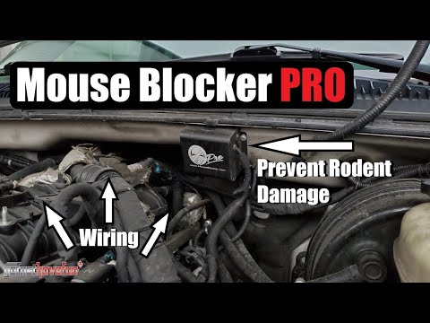 Prevent Mouse/ Rodent Damage to car wiring (Mouse Blocker Pro) | AnthonyJ350