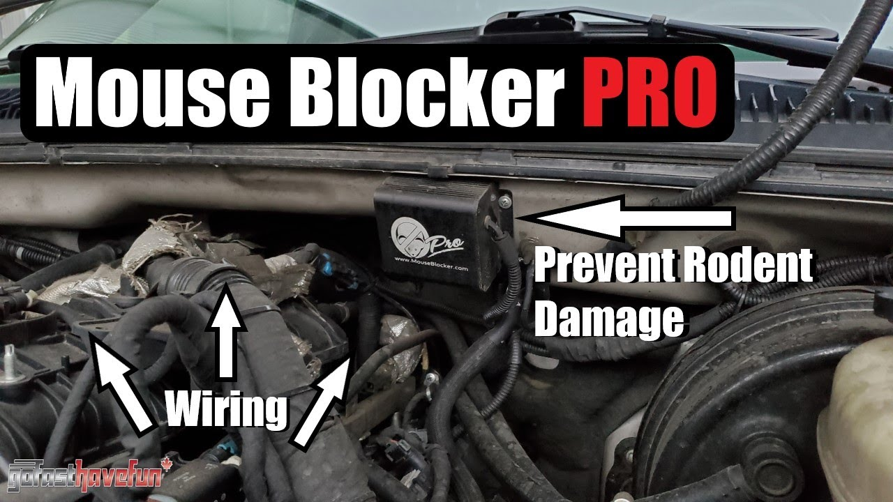 Prevent Mouse Rodent Damage To Car Wiring Blocker Pro Anthonyj350