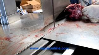 Commercial Meat Bandsaw Venison Large Bones Cut Demo   323 268 8514