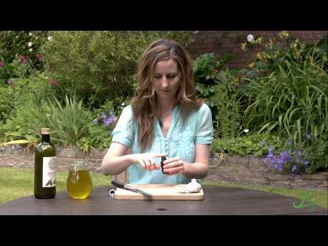 Natural Ear Infection Remedies – Amchara Health