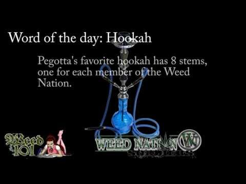 Word of the Day Hookah - Weed 101