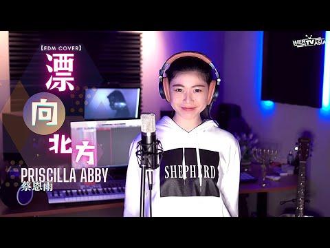 黃明志Namewee feat. 王力宏 Leehom [ 漂向北方 ] EDM Cover ( 蔡恩雨 Priscilla Abby )