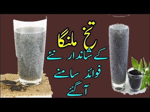 health-tips-of-basil-seeds-in-urdu-hindi|benefits-of-tukh-malanga|tukh-malanga-kay-faiday