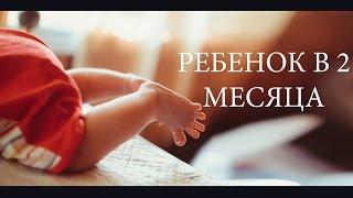 ребёнок в 2 месяца видео