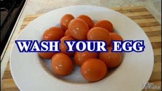 Wash Your Eggs Before You Put In Your Fridge At Home   Recipes By Chef Ricardo