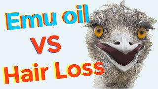 How to use emu oil for hair growth and hair loss prevention