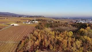 Geisenheim im Herbst
