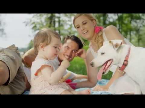 Stein 39 S Garden Home For The Pets In Your Life Youtube