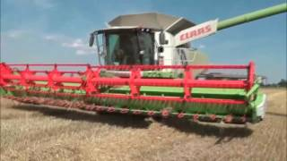 Поздравление с Днем работников сельского хозяйстваСПК Гигант