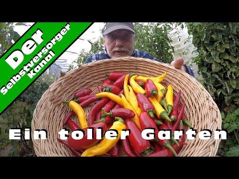 Jahresrückblick Teil 4 Ein Garten ist mehr als nur ein Garten