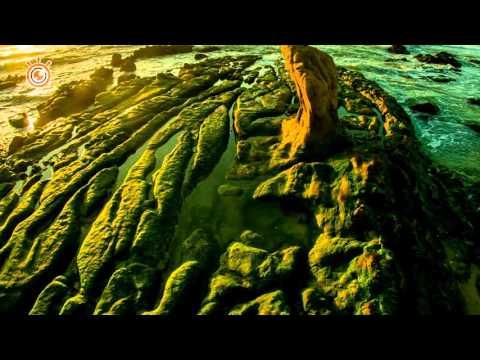 Mùa rêu Cổ Thạch - Bình Thuận