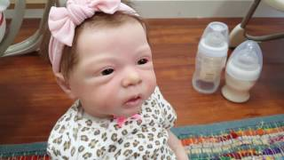 UPDATE CURRENT REBORN BABY COLLECTION FEATURING REBORN TWINS SO MANY LIFE LIKE DOLLS