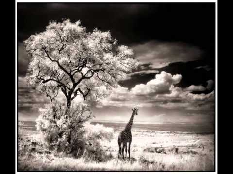 Instrumental: Beautiful World - Africa