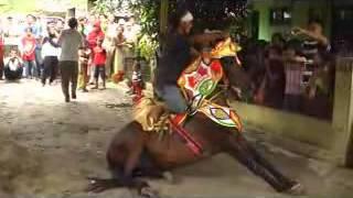 kesenian kuda renggong- kuda silat asli sumedang