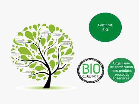 certification biologique Algérie