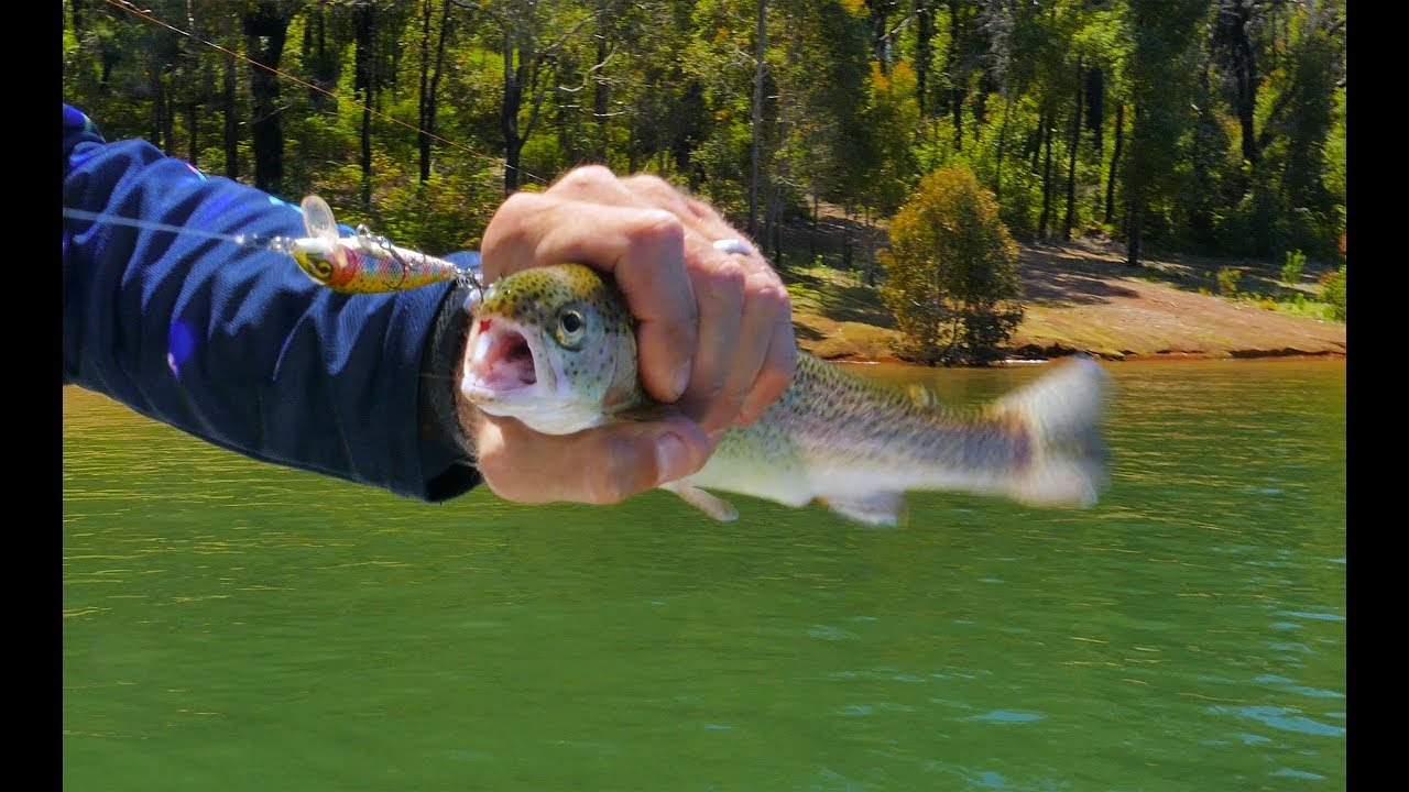 Waroona Trout with Nick Hocking Part 2