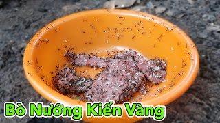 Lâm Vlog - Món Ăn Kinh Dị Thịt Bò Nướng Kiến Vàng | AMAZING FOOD